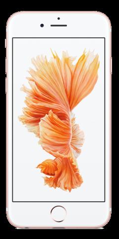 Apple Iphone 6s Blau Allnet L